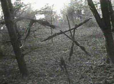 blair-witch-project-photo2 dans Films fantastiques : Le projet Blair Witch